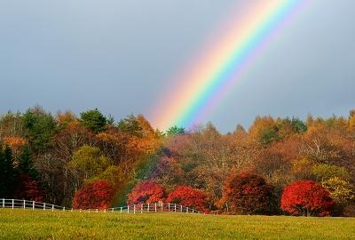rainbow131104_02.jpg