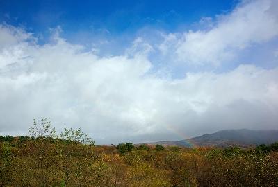 rainbow131111_01.jpg