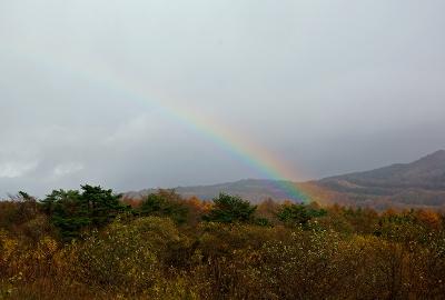 rainbow131111_03.jpg