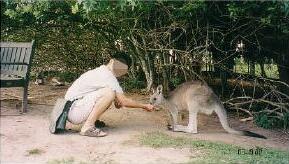 australia76.jpg