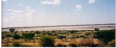 australia_40.jpg