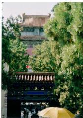 china_12.jpg