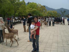 hiroshima_08.jpg