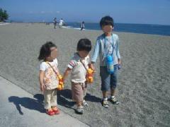 kochi_10.jpg