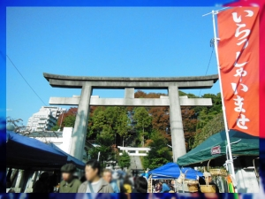 住吉神社1117_2