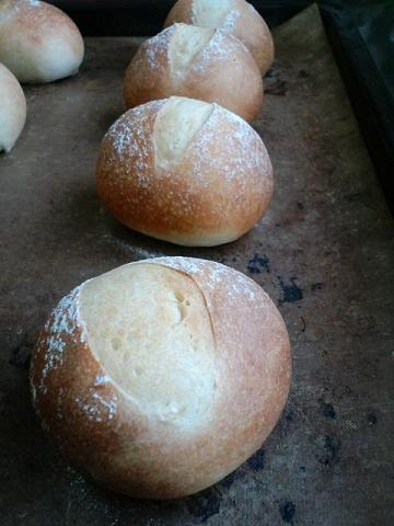 パンみるくパン小