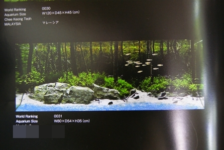 DSC076571.jpg