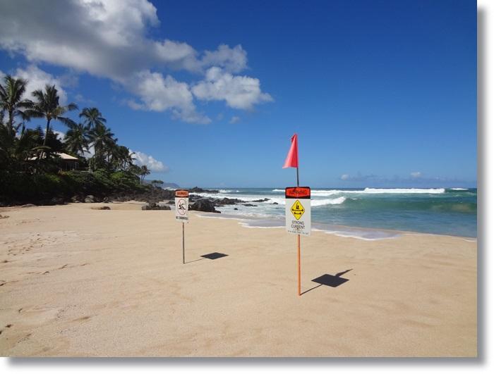 ラニアケアビーチ DSC04739