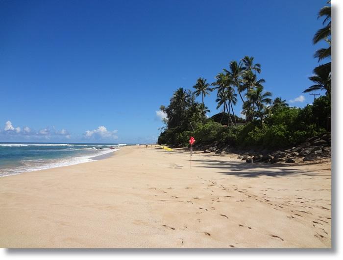 ラニアケアビーチ DSC04740