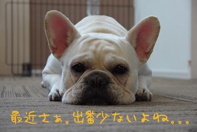 kiji_25_6_2_ramu1.jpg