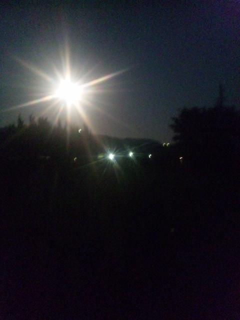 お月見さん2