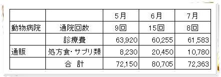 0731長女診療費1