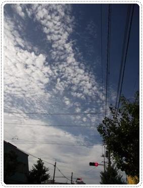 0906うろこ雲