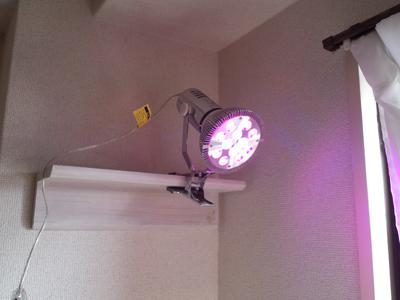 20131117-LED.jpg