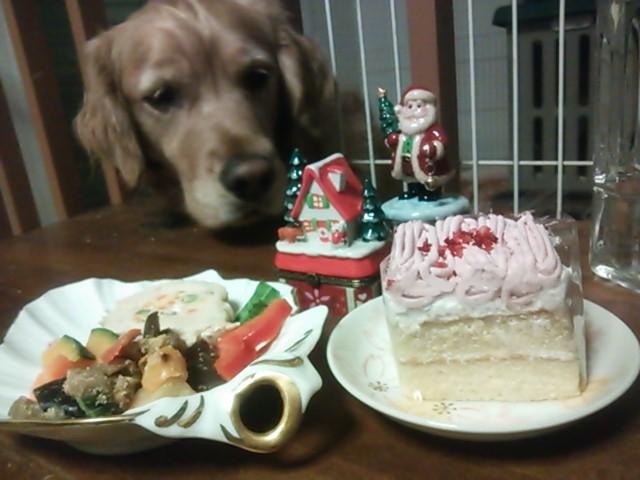 風菜ちゃんクリスマスにお正月に誕生日3