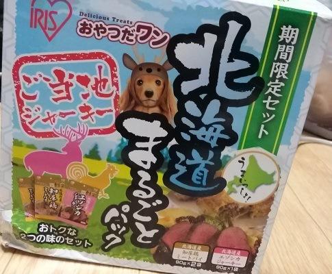 dog2 (2)