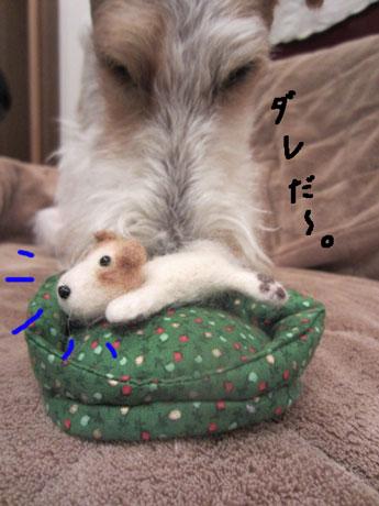 1_20140121181108dcf.jpg