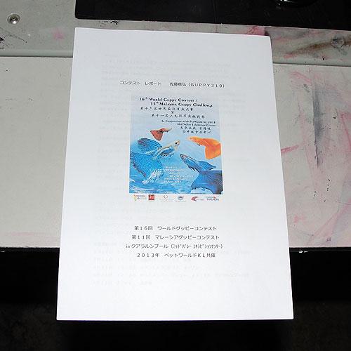 DSC_0021_20130730224859fd9.jpg