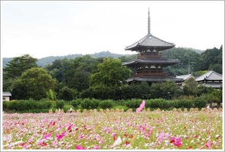 2013_houkiji_3.jpg