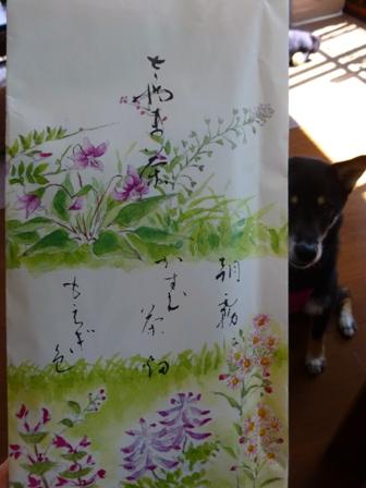 チキンとタイカレー(イエロー)2