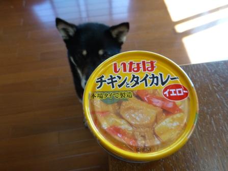 チキンとタイカレー(イエロー)4