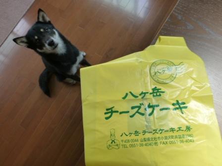 八ヶ岳チーズケーキ工房1