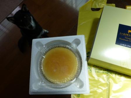 八ヶ岳チーズケーキ工房4