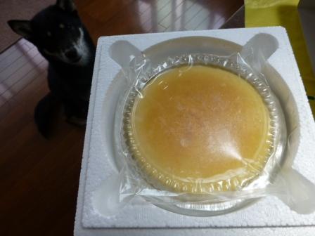 八ヶ岳チーズケーキ工房5