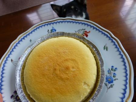 八ヶ岳チーズケーキ工房9