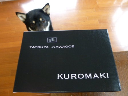 タツヤカワゴエシロマキクロマキ16