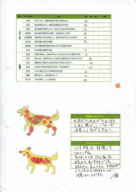 動物病院(05242013)3
