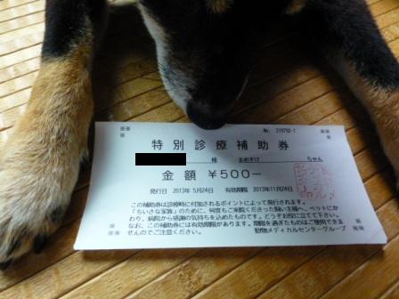 動物病院(05242013)28