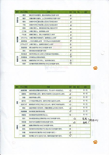 6月7日病院清水庵3