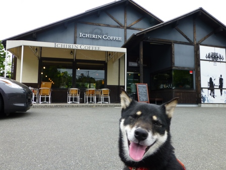 ICHIRIN COFFEE 豊中緑丘店8