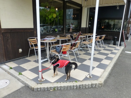 ICHIRIN COFFEE 豊中緑丘店9