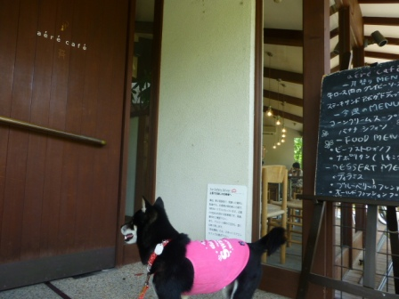 aere cafe(アエレカフェ)5