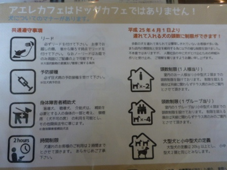 aere cafe(アエレカフェ)11