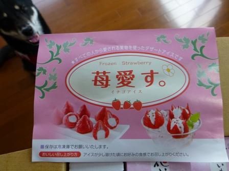 花いちごのアイス4