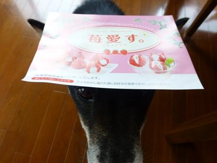 花いちごのアイス8