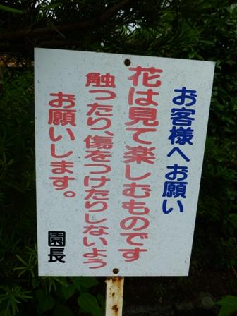 柳生花しょうぶ園20