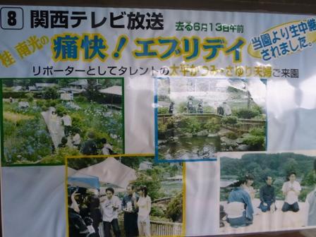 柳生花しょうぶ園29