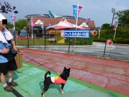 生駒山上遊園地10