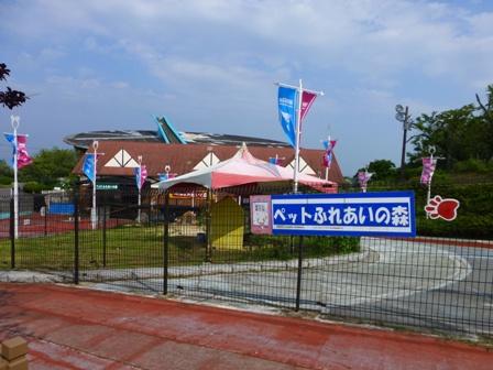 生駒山上遊園地11