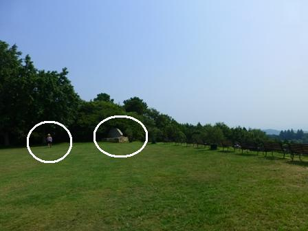 牛窓オリーブ園18