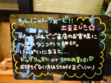パスタフローラ岡山新保店13