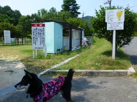 みやま公園ドッグラン1