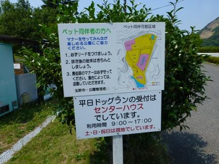 みやま公園ドッグラン2