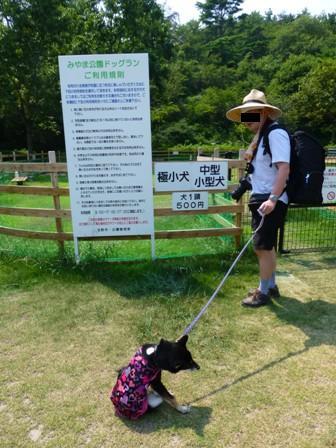 みやま公園ドッグラン4