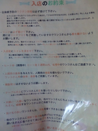 Dog Cafe 楓6
