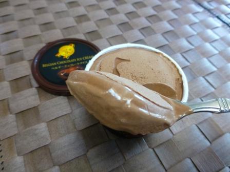 ベルギーチョコレートアイス10